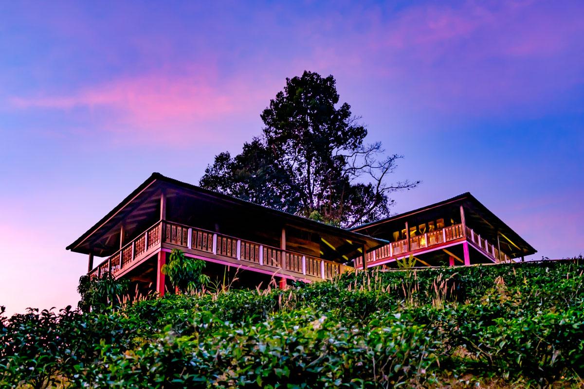 Detox at Chivasuka near Chiang Mai