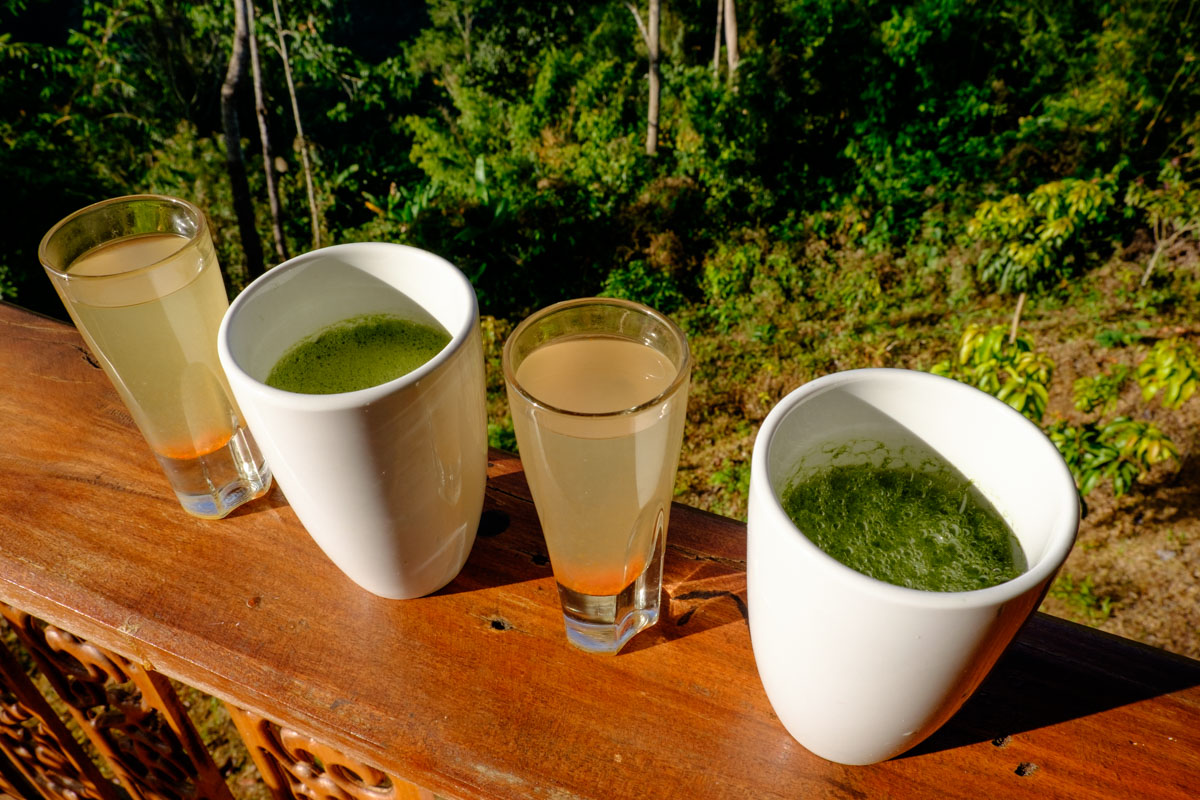Detox at Chivasuka near Chiang Mai