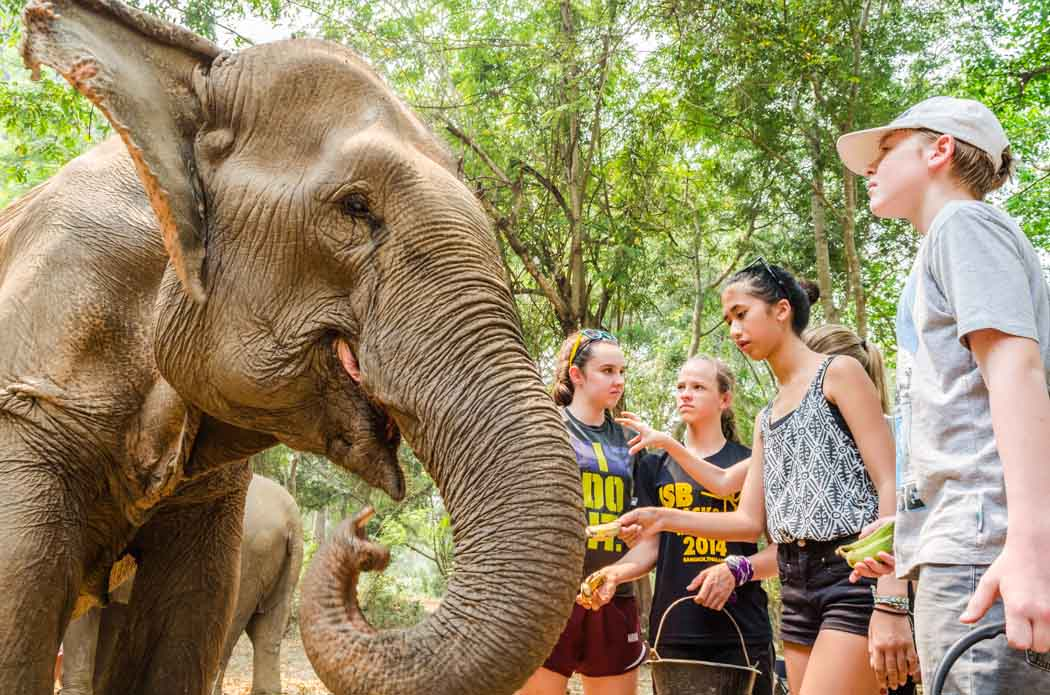 Kids feeding an elephant at Erawan Elephant Paradise.
