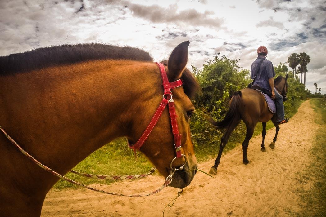 Horseback riding in Cambodia.