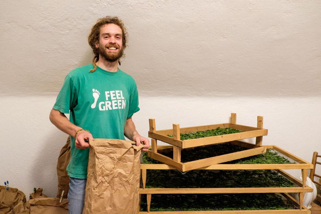 Matej Slovenian herbalist