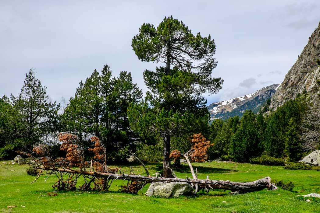 Lleida Pyrenees in Spain