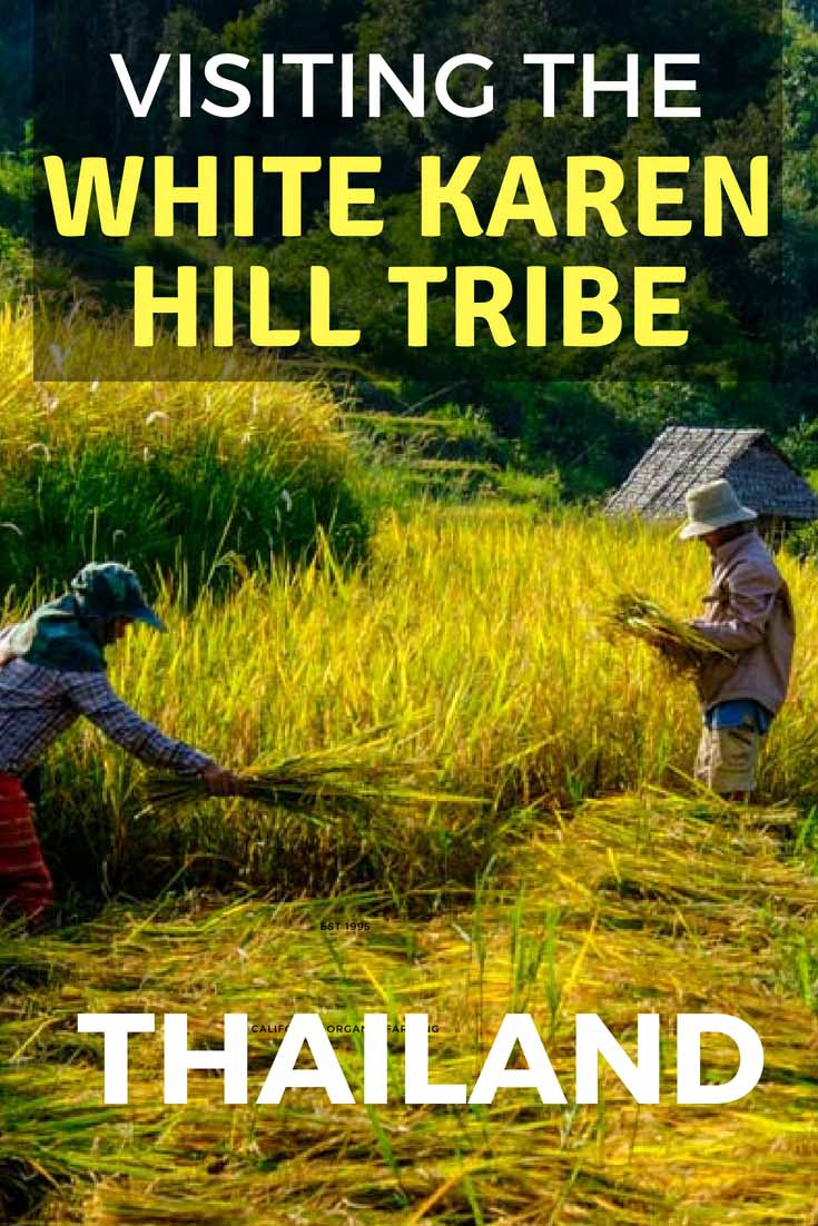 White Karen Hill Tribes