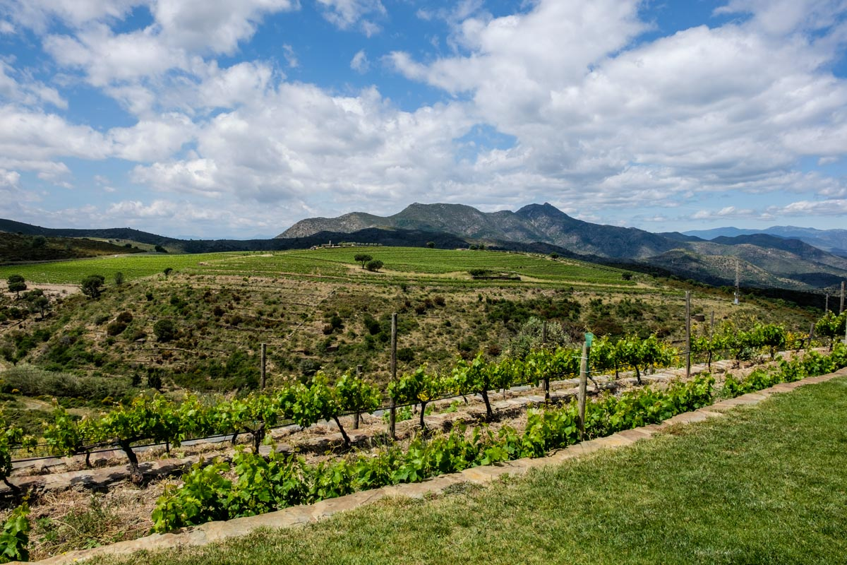 Costa Brava wineries