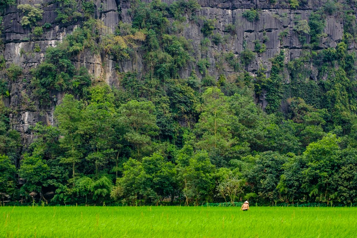 how to visit Tam Coc