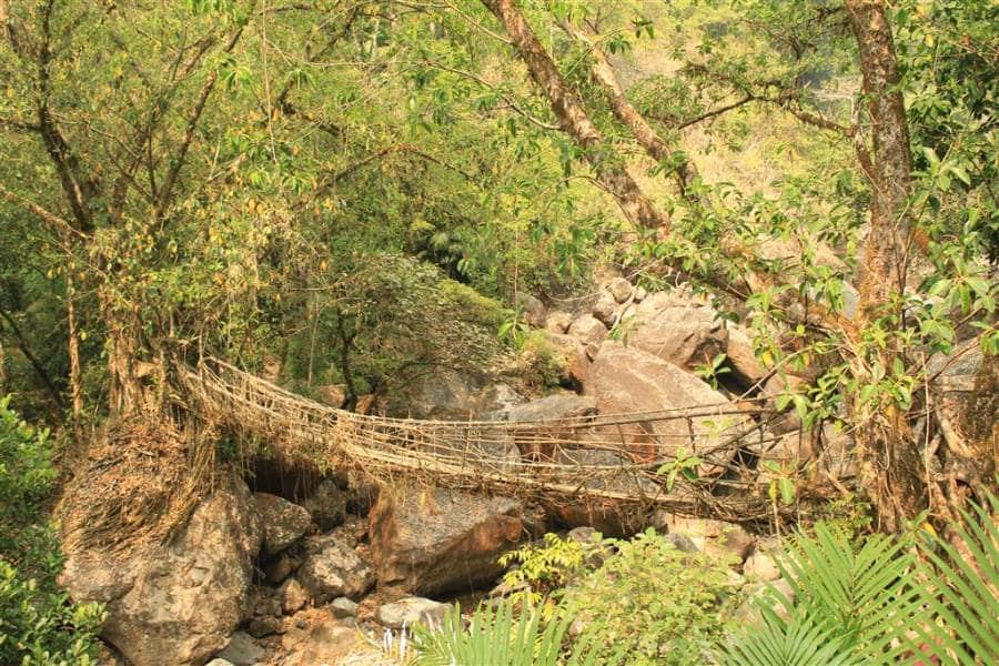 Meghalaya bridges