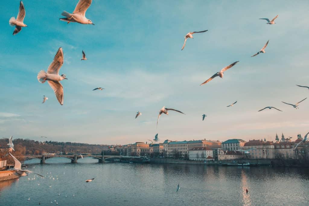 weekend in Prague